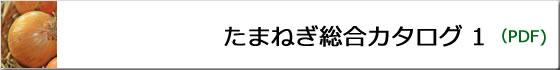 たまねぎ総合カタログ1